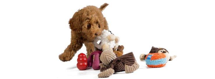 Speelgoed-&-puzzels