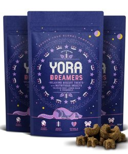 Yora Dreamers