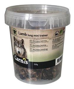 Mini trainers lamslong